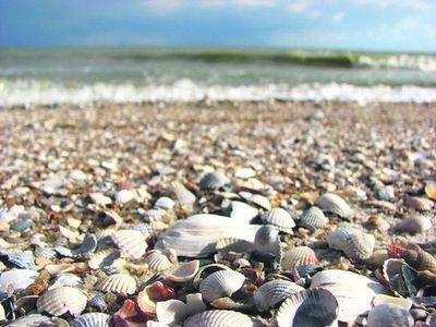 Азовское море- все ли пляжи уйдут под воду?